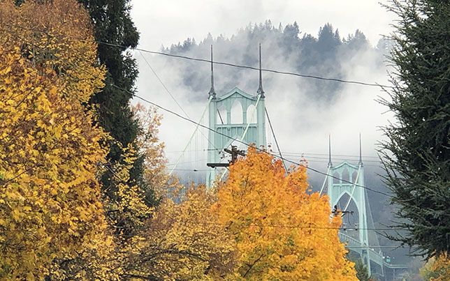 Picture of the St. Johns Bridge