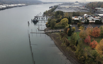 Proposed Passenger Ferry To Stop in Cathedral Park