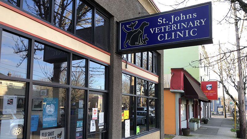 Picture of St. Johns Veterinary Clinic run by Dr. Peter Davis.